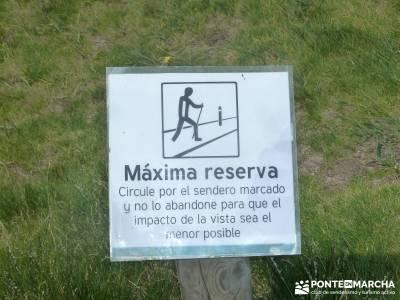 Lagunas de Pelañara-Peña Cítores- Guadarrama; senderistas madrid excursiones de senderismo